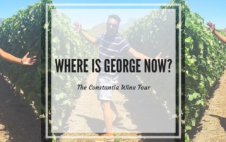 the constantia wine tour