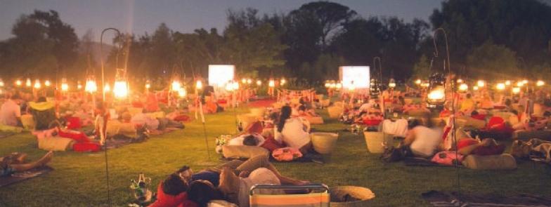 spier wine farm movies