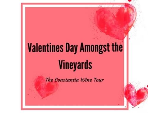 Valentine's Day Amongst the Vineyards