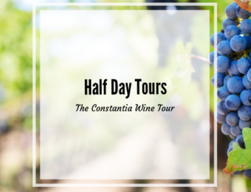 Private Half Day Tours